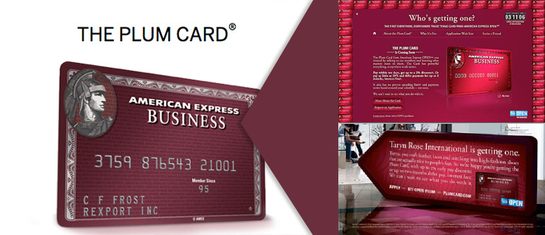 when american express first executed a well publicized marketing campaign for a then new small business credit card the plum card from american - American Express Business Credit Card