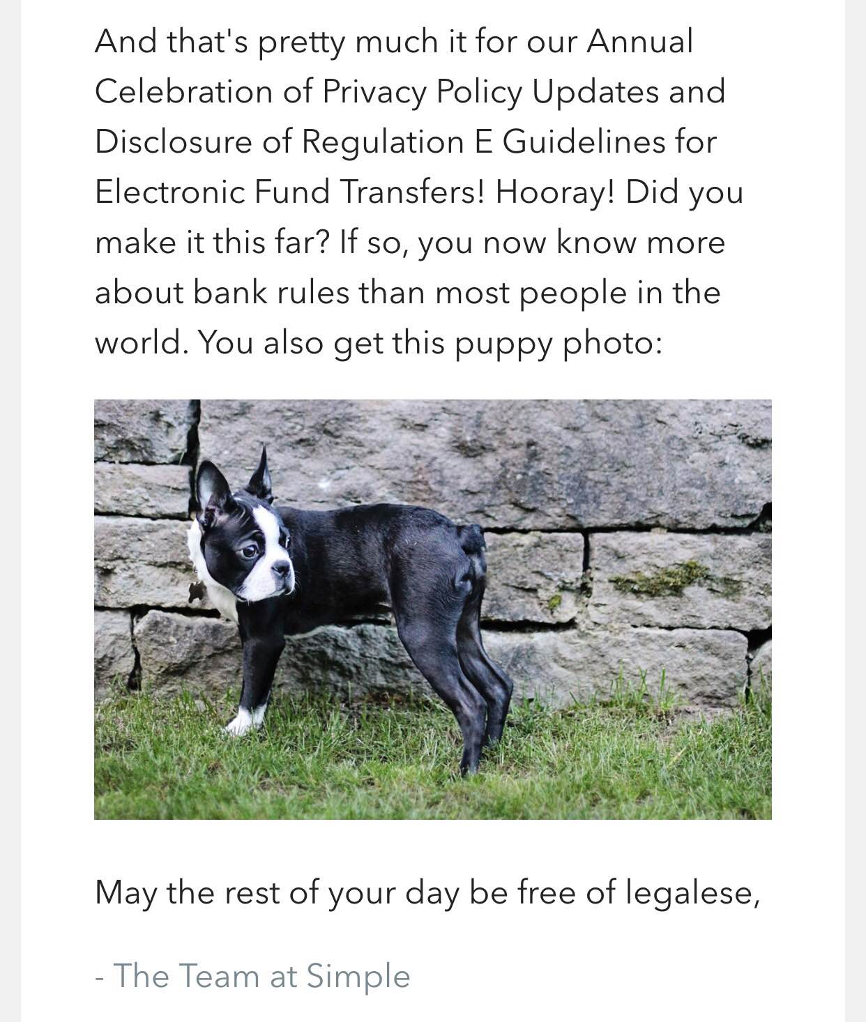 Puppy picture helps Simple Bank's customer communication on privacy policy to be educational and fun